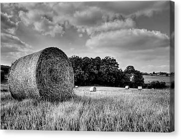 Hay Race Track Canvas Print
