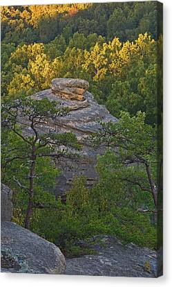 Hay Stack Rock.  Canvas Print by Ulrich Burkhalter