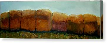 Haybales Canvas Print by Judy  Blundell