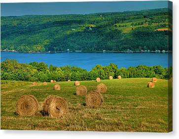 Hayfield And Lake Iv Canvas Print by Steven Ainsworth
