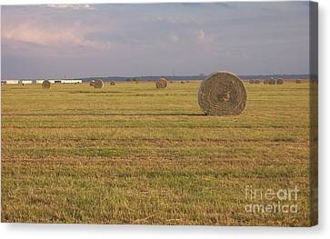 Hayfield Perspective Canvas Print
