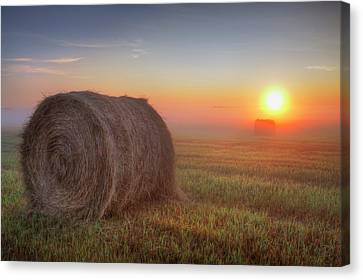 Hayrise Canvas Print by Dan Jurak