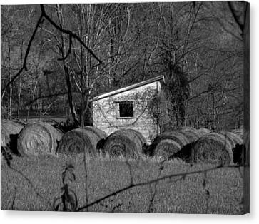 Hayroll Shed 2 Canvas Print by Michael L Kimble