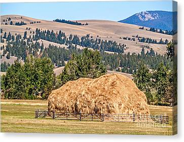 Canvas Print featuring the photograph Haystack Created With A Beaverslide by Sue Smith