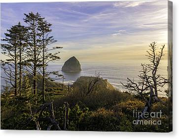Haystack Rock At Evening's Calm Canvas Print by Moore Northwest Images