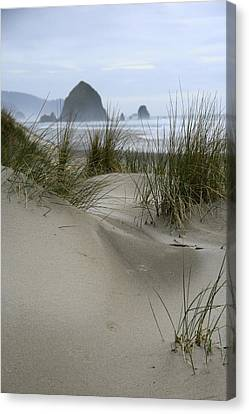 Haystack Rock From Chapman Point Canvas Print by Steven A Bash