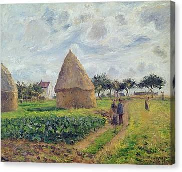 Haystacks Canvas Print by Camille Pissarro