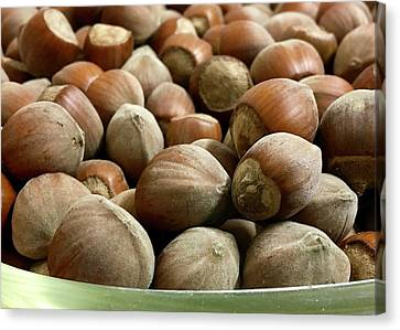Hazelnuts Canvas Print by Contemporary Art