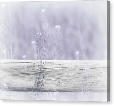 Canvas Print featuring the photograph Hazy Lavender Wildflowers by Jennie Marie Schell