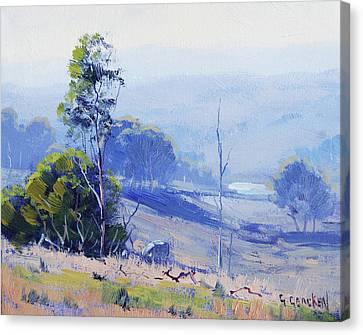 Hazy Light Mudgee Canvas Print by Graham Gercken