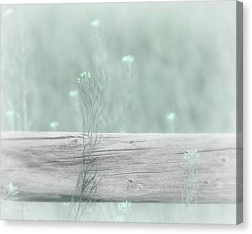 Canvas Print featuring the photograph Hazy Teal Wildflowers by Jennie Marie Schell