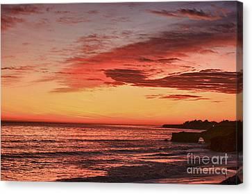 hd 330 Dog Beach 1 HDR Canvas Print by Chris Berry