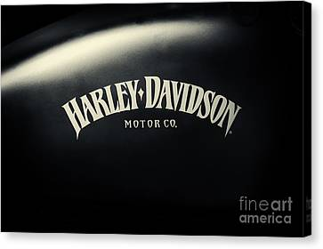 Hd Iron 883 Gas Tank Canvas Print by Tim Gainey