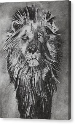 He Watchers Over Canvas Print by Angela Bull