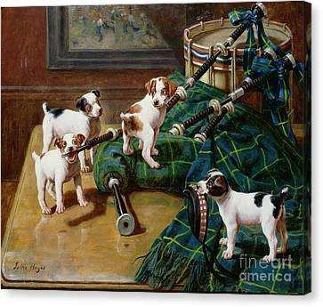 Scottish Dog Canvas Print - He Who Pays The Piper Calls The Tune by John Hayes