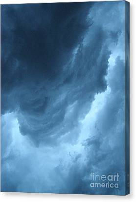Head For Cover Canvas Print by Angie Rea