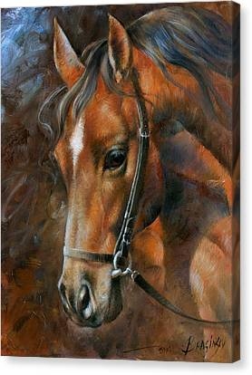 Head Horse Canvas Print by Arthur Braginsky