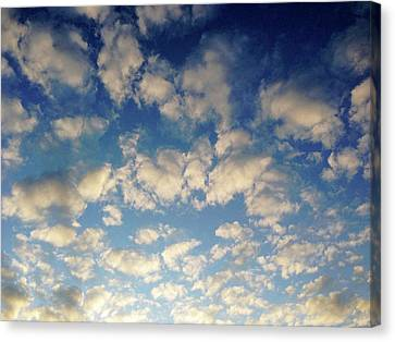 Head In The Clouds- Art By Linda Woods Canvas Print by Linda Woods