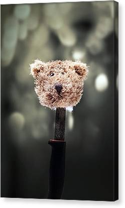 Thriller Canvas Print - Head Of A Teddy by Joana Kruse