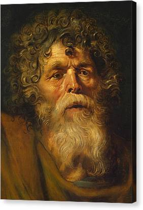Head Of An Old Man Canvas Print by Peter Paul Rubens