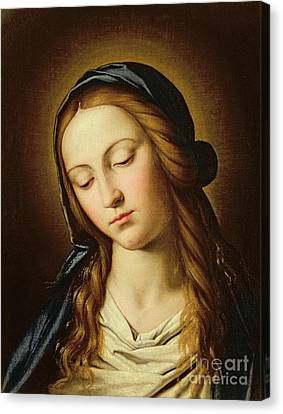 Head Of The Madonna Canvas Print by Il Sassoferrato