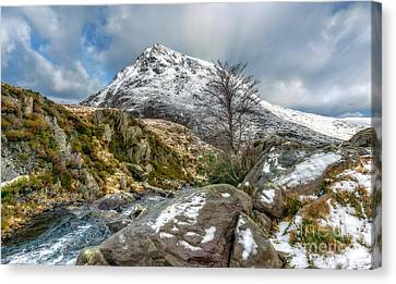 Cwm Idwal Canvas Print - Head Of The White Slope by Adrian Evans