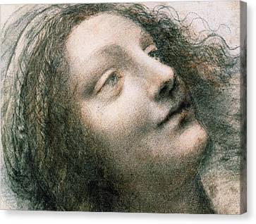 Madonna Canvas Print - Head Of Virgin by Leonardo Da Vinci