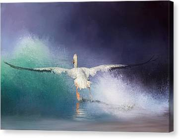 Flying White Pelicans Canvas Print - Head On by Jai Johnson