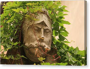 Head With Vines Canvas Print by Michael Henderson