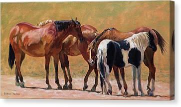 Heads Or Tails Canvas Print by Bonnie Mason