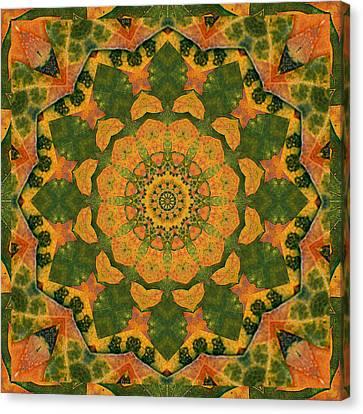 Healing Mandala 9 Canvas Print