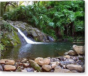 Healing Pool - Maui Hawaii Canvas Print by Glenn McCarthy Art and Photography