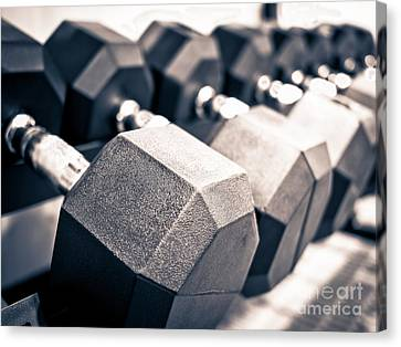 Healthclub Free Weights Dumbbell Rack Canvas Print by Paul Velgos