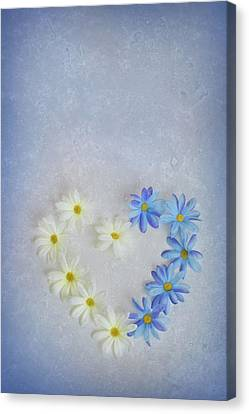 Heart And Flowers Canvas Print