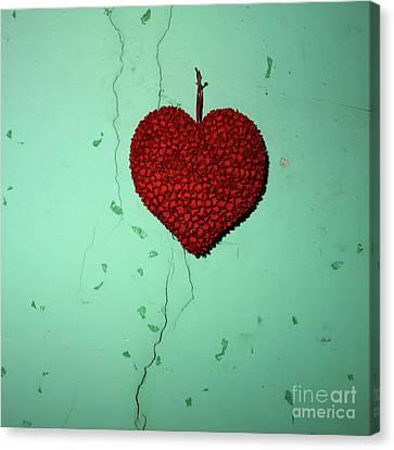Heart Canvas Print by Bernard Jaubert