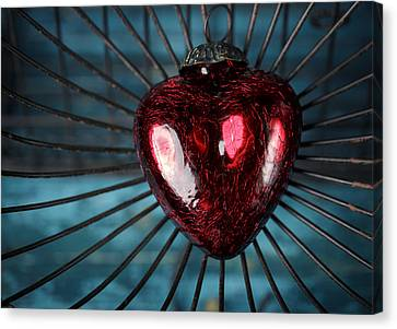 Heart In Cage Canvas Print by Nailia Schwarz