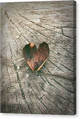 Heart In The Woods Canvas Print by Robert Chambers