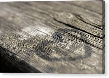 Heart On A Table Canvas Print by Germano Poli