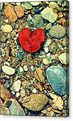 Heart On The Rocks Canvas Print by Susie Weaver