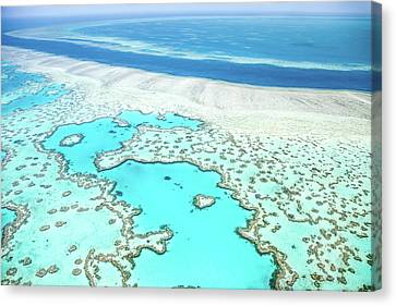 Heart Reef Canvas Print by Az Jackson
