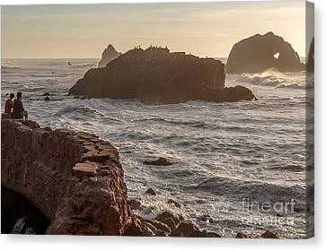 Heart Rock Canvas Print by Kate Brown