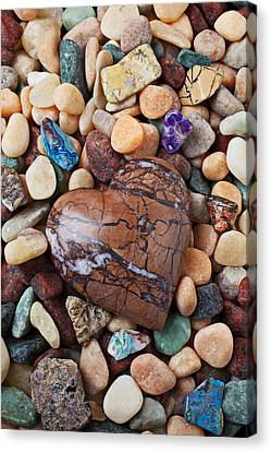 Solid Canvas Print - Heart Stone Among River Stones by Garry Gay