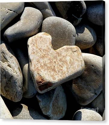 Canvas Print featuring the photograph Heart Stone by Lainie Wrightson