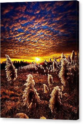 Heaven And Earth Canvas Print by Phil Koch