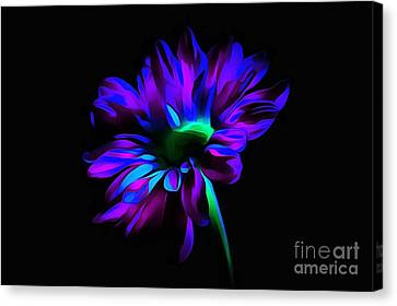 Heaven Sent Canvas Print by Krissy Katsimbras
