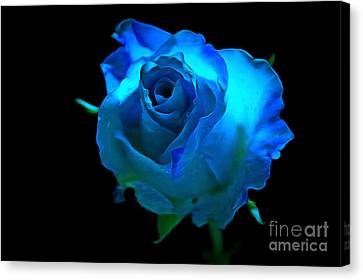 Heavenly Blues Canvas Print by Krissy Katsimbras