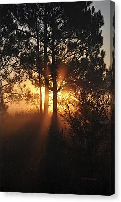 Heavenly Canvas Print by John Knapko