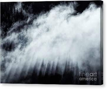 Heavenly Canvas Print by Mike Dawson