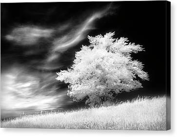 Canvas Print featuring the photograph Heavenly Places by Dan Jurak