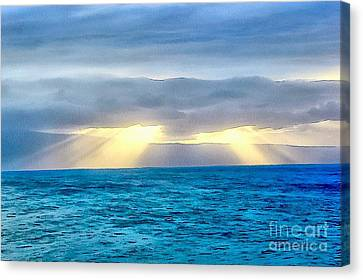 Heaven's Luminous Grace Canvas Print